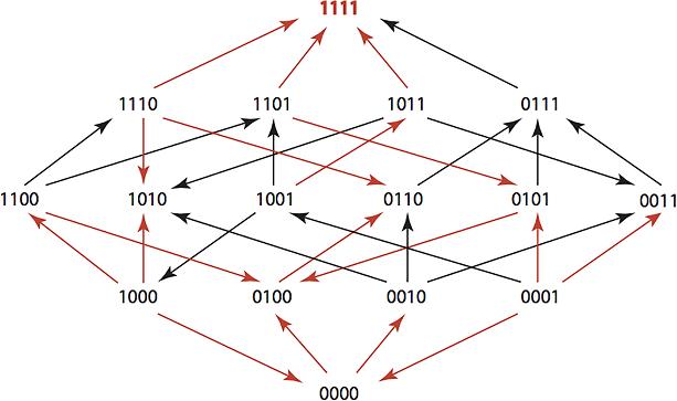 TEM-1 Network